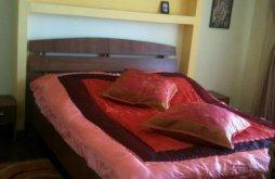 Accommodation Horia, Andra B&B