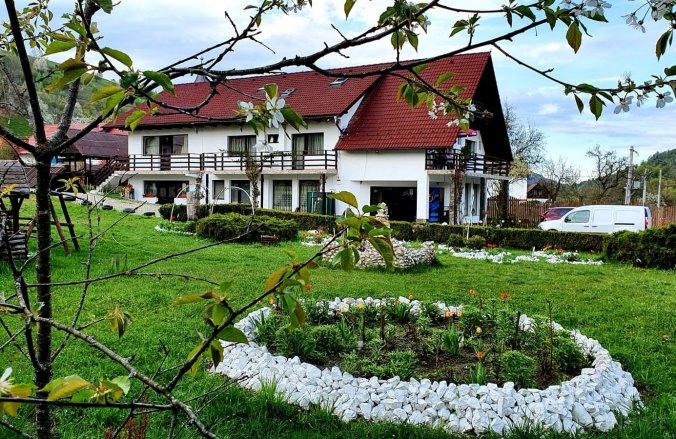 Negrea Villa Törcsvár