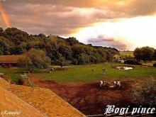 Cazare Lacul Velența, Casa de oaspeți Bogi-Pince