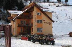 Motel Izvoru Rece (Stoilești), Veturia Panzió