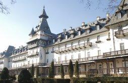 Hotel Călimănești, Hotel Central