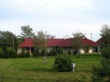 Kulcsosház Látrány, Fenyves-tábor