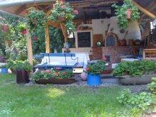 Accommodation Berkenye, Hostel Fót