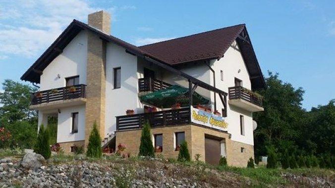 Poienița Apusenilor Guesthouse Moldovenești