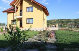 Accommodation Romania, Diana Guesthouse