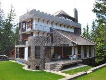 Vacation home Rugetu (Slătioara), Stone Castle
