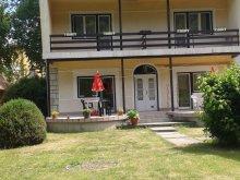 Accommodation Nagycsécs, Platán Apartment