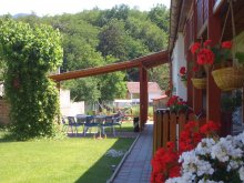 Accommodation Bernecebaráti, Ezüstfenyő Guesthouse