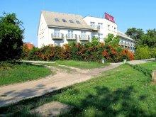 Hotel Töltéstava, Hotel Pontis