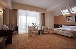 Cazare Burca cu tratament, Hotel Clermont
