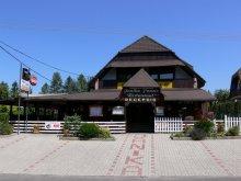 Pensiune Lacul Balaton, Casa de oaspeți Janika