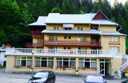 Hotel Negrești (Dobreni), Hotel Brandusa
