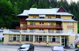 Hotel Piatra-Neamț, Hotel Brandusa