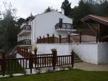 Accommodation Visegrád Nagyvillám Ski Resort, Gréti Wellness & Spa