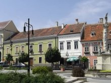 Cazare Ungaria, Casa de oaspeți Dóra