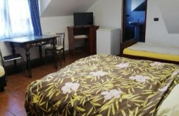 Accommodation Curtici, Mario Guesthouse