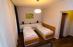 Accommodation Câmpia Turzii, La Broscuța Guesthouse
