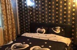 Accommodation Podișu, Claudio Nic Guesthouse
