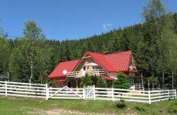 Casă de oaspeți Vârfurile, Casa de Oaspeți Podina