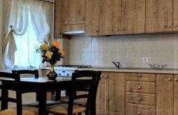 Accommodation Râu Sadului, Giulio Apartment