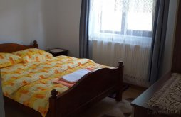 Hostel Sărăzani, Casa Ianis