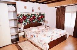 Accommodation Crasna Vișeului, Bocrită Guesthouse