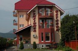 Apartament Dumbrava Roșie, Pensiunea Octogon