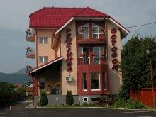 Szállás Hăbășești, Octogon Panzió
