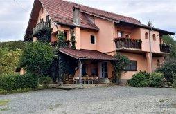 Apartman Oltfelsősebes (Sebeșu de Sus), Zsolt & Erika Panzió