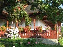 Accommodation Lunca (Vârfu Câmpului), Ana Maria Guesthouse