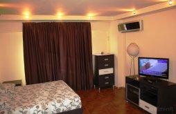 Accommodation near Palace of the Parliament, Premium Burebista Apartment