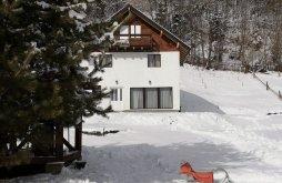 Accommodation Cârlibaba, La Trei Brazi Chalet