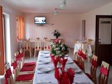 Accommodation Săldăbagiu de Munte, Denisa & Madalina Guesthouse