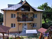 Accommodation Pleșești, Calix Vila