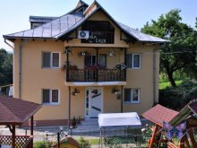 Villa Pleșoiu (Livezi), Calix Villa