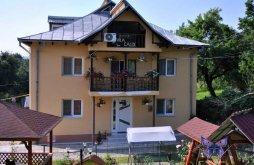 Villa Târgu Gângulești, Calix Villa