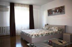 Accommodation near Palace of the Parliament, Premium Burebista Studio