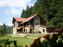 Accommodation Valea Vinului, Denisa Guesthouse