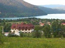Szilveszteri csomag Bargován (Bârgăuani), Ecotur Villa