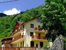 Accommodation Huzărești, Georgiana Guesthouse