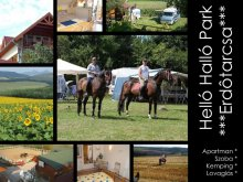 Accommodation Berkenye, HelloHalloPark Guesthouse