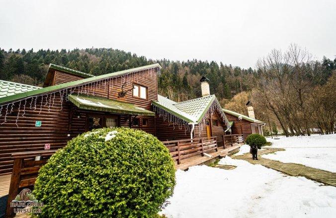 Vila Complex Turistic Barlogul Ursului Agăș