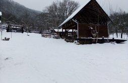 Accommodation Görgény völgye, Hagyó Guesthouse
