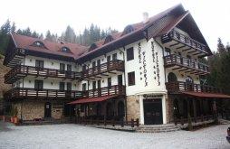 Hotel Borsabánya (Băile Borșa), Victoria Hotel