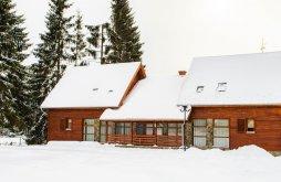 Hostel Broșteni, Kommando Camp