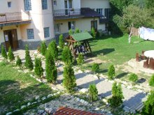 Accommodation Gura Siriului, La Valtoare Guesthouse