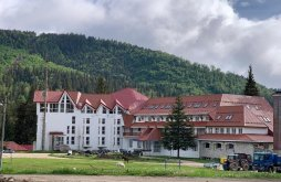Hotel Remeți, Hotel Iadolina