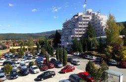 Hotel Andreiașu de Jos, Hotel Montana