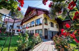 Accommodation Moieciu de Sus, Dana Olteanu Guesthouse