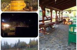 Accommodation Frâncenii Boiului, Family Time Chalet